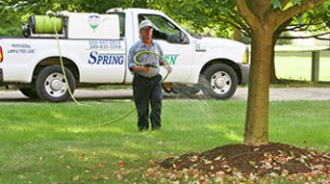 TC_More-Lawn-Watering-Tips