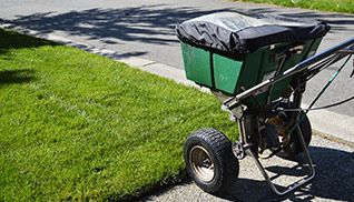 service_aeration-and-overseeding