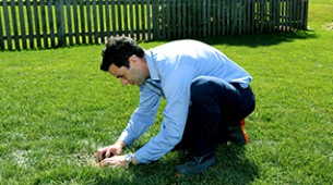 Identifying Lawn Problems