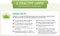 healthy lawn benefits