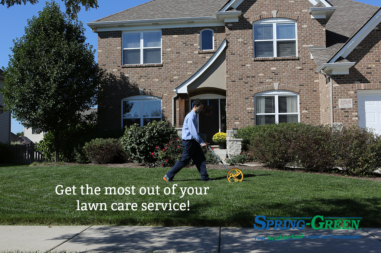 expect from your lawn care company